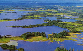 Photo-Seney National Wildlife Refuge